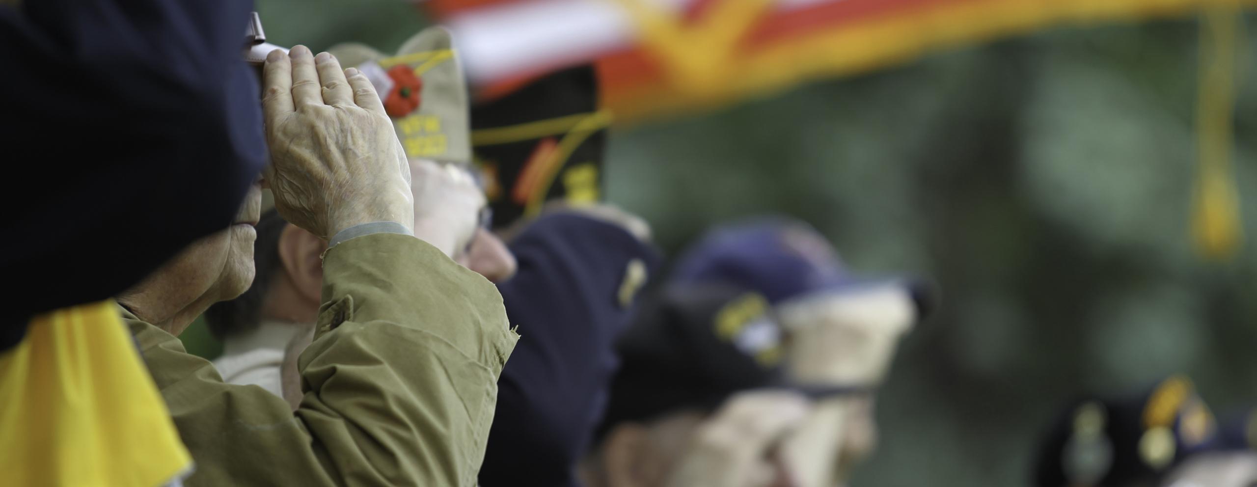 Veterans saluting flag